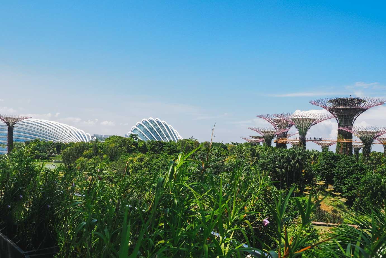 Singapour, la cité-état à découvrir
