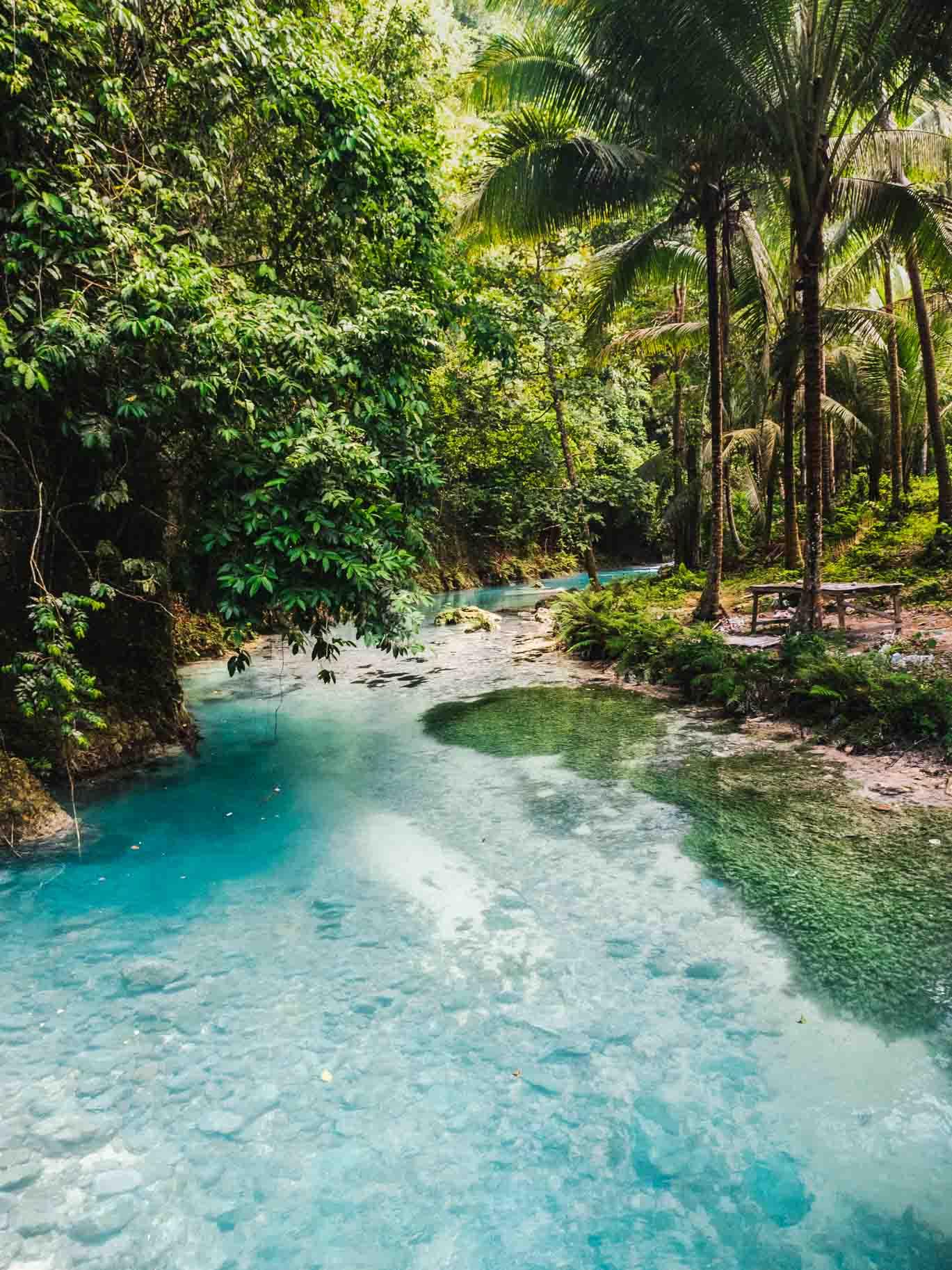 Moalboal Waterfalls Tortue Et Sardine Run Nomade Amoureux