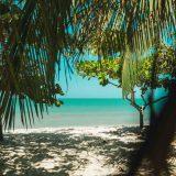 Un paradis situé 2 heures de Carthagène