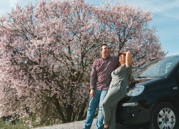 Un couple d'amoureux devant un arbre en fleurs.
