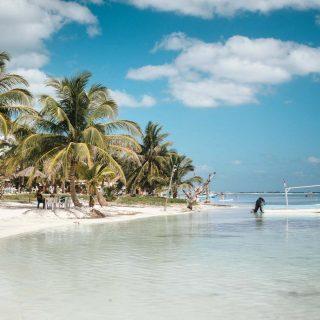✈️ On a quitté Mahahual depuis 2 jours. On mentirait si on vous disait que ces paysages ne nous manquent pas. On s'était habitué au calme, à l'eau turquoise et à la chaleur des caraïbes. 🥰Par contre, nous sommes vraiment heureux de notre arrivée à Mazatlán. Le condo qu'on loue actuellement est tellement beau, propre et CONFORTABLE !  Pour vrai, on CA-PO-TE !  On a été faire une épicerie avec de beaux et bons produits variés et on a même dormi les lumières fermées pour la première fois depuis plusieurs jours. Si vous suivez nos aventures en stories, vous savez les mésaventures que nous avons eues avec les cafards et les araignées géantes notamment 🕷.  On doit vous avouer que nous sommes heureux et excités de découvrir d'autres choses ! Un mode de vie nomade c'est aussi ça, même si c'est dans un seul pays !  . . . . .  #expatlife#expat#expatliving#travellater#staysafe#quintanaroo#quintanaroomexico#mahahual#mexique#mexique🇲🇽#couplegoals#digital#nomadlife#nomad#nomadenumérique#digitalnomad#caraïbes#caribemexicano#bestlife#staypositive#beachday#happyme #viedentrepreneur #viedenomade #workhardplayhard #beachvibes #travellater #expatlifestyle