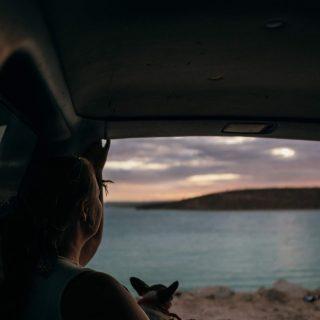 Un vieux truck , un coucher de soleil et la bonne compagnie 👩❤️👨🐶= moment de pur bonheur 🧡🇲🇽🌴🌵  —————————————————  #sunset #bonheursimple #expatlife#expat#expatliving#bcs #mexico#lapaz#mexique🇲🇽#couplegoals#digital#nomadlife#nomad#nomadenumérique#digitalnomad#bestlife#staypositive #happyme#vivreautrement #livenom #globetrotters #travelinspiration #visitmexico #visitbajacalifornia #canadianexpat #expatblogger #ilivewhereyouvacation