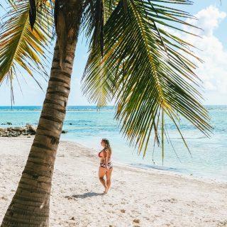 🌴 S O U V E N I R 🌴  Happiness is found under a palm tree… or cactus 🌵 😉  📷 📍: Mahahual, Quintana Roo, Mexique 🇲🇽
